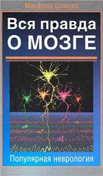 Работа мозга, нейробиология,как устроен мозг